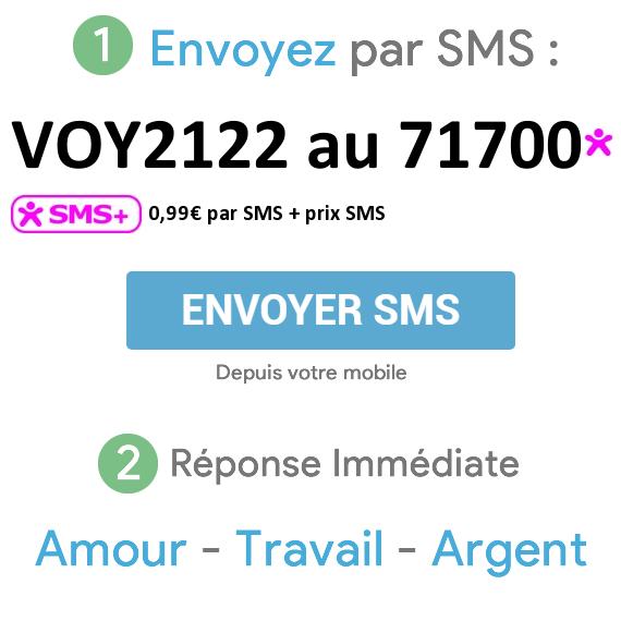 32a131d5847cab Pour une consultation par sms vous devez simplement envoyer VOY2122 au  71700 0,99€ par SMS + prix SMS. Vous allez ainsi avoir accès à une  consultation de ...